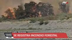 Se registra incendio forestal en el sector Cardal de Pachacámac [VIDEO]