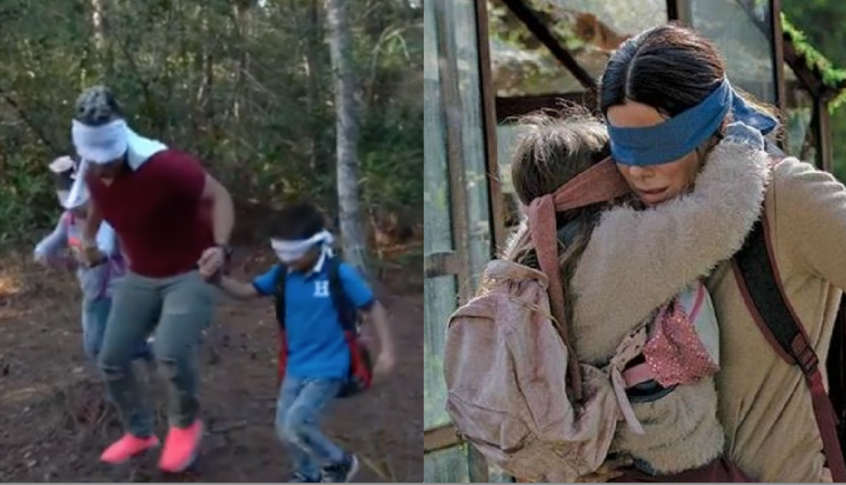 el 'Bird Box Challenge